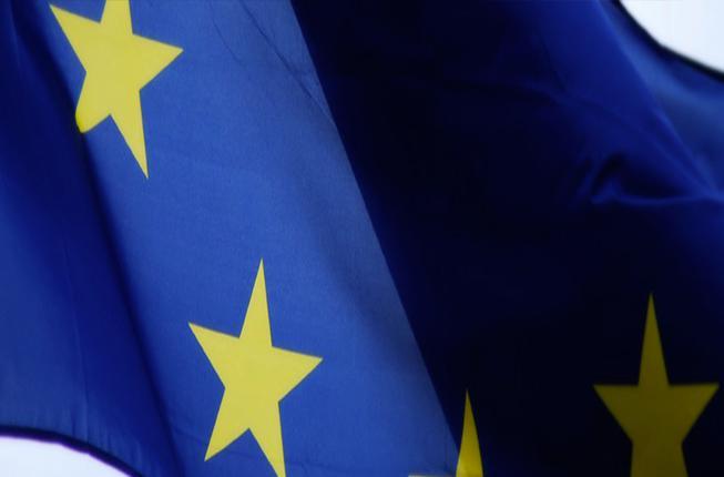 Collegamento a Osservatorio Europeo sugli Aiuti di Stato
